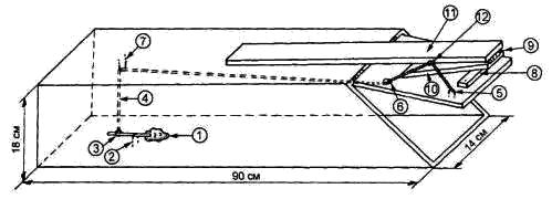 Живоловушка для лисы своими руками чертежи 52